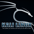 kali-linux-install-to-usb-persistence000