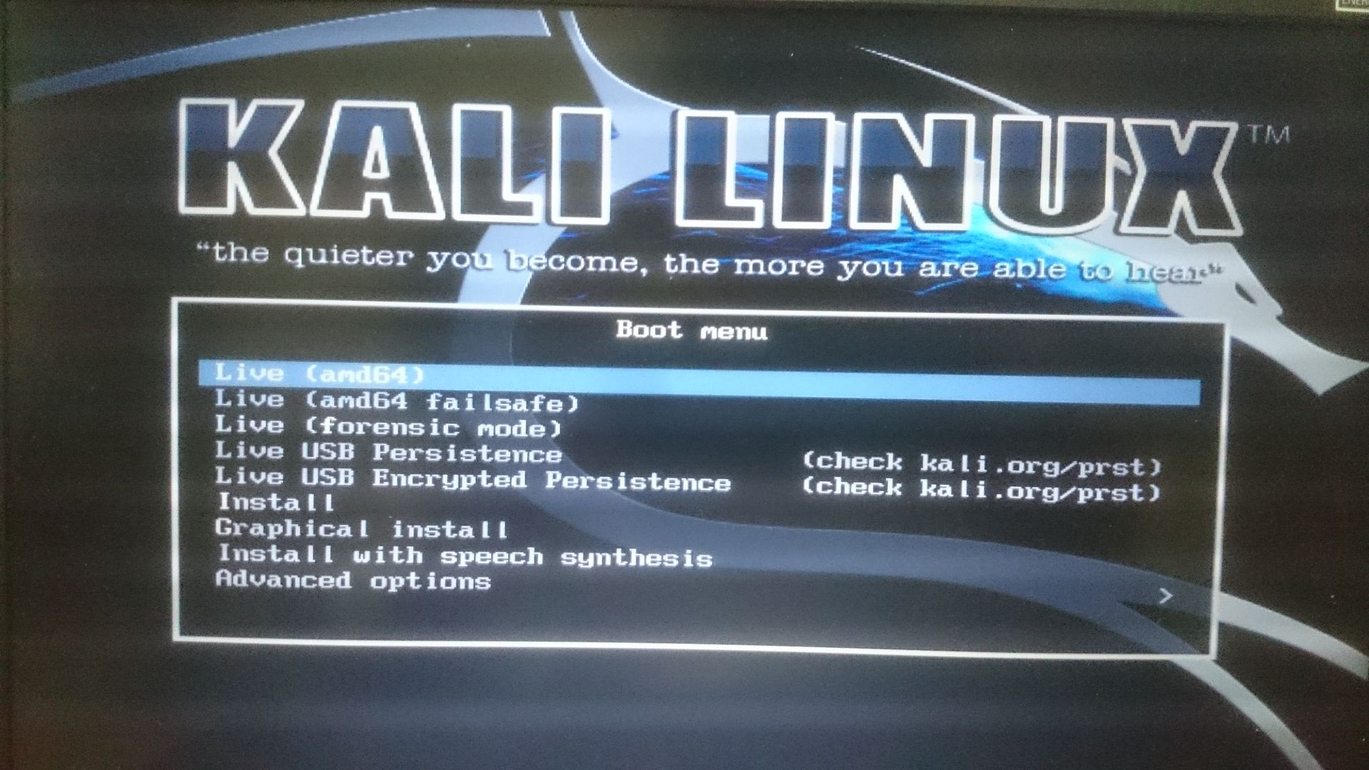 kali-linux-install-to-usb-persistence24